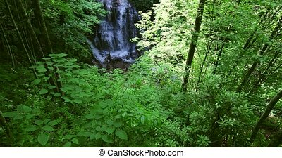 beau, chute eau, dans, grandes montagnes enfumées parc...