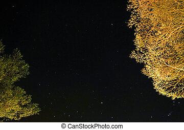 beau, ciel étoilé, nuit