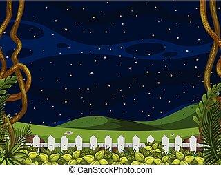 beau, ciel clair, paysage, nuit