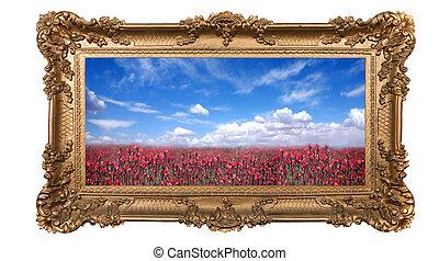 beau, ciel, encadré, champ, joli, fleurs, rouges