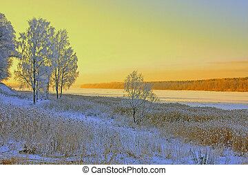 beau, ciel, paysage hiver