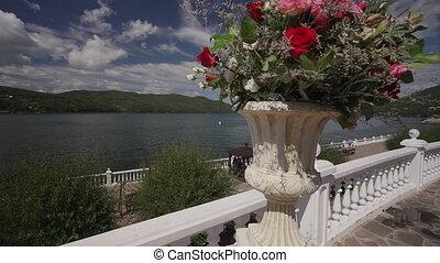 beau, closeup, mer, arrangement, roses, mariage, fond, pot,...