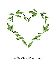 beau, coeur, feuilles, vigne, forme, vert