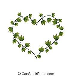beau coeur vigne forme vert lierre coeur plante clipart vectoris recherchez. Black Bedroom Furniture Sets. Home Design Ideas