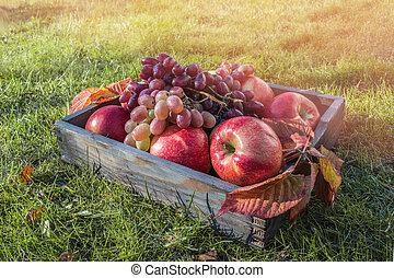 beau, concept, mûre, bois, box., pommes, raisins, herbe, récolte, rouges, tas