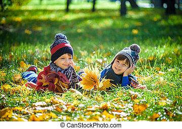 beau, concept, saison, garçon, automne, peu, day., lot, ensoleillé, chaud, jaune, enfant, enfants, gosse, garçon, octobre, style de vie, feuilles, pose, park., amusement, avoir