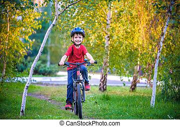 beau, concept, vélo, automne, années, sports, sports., day., forêt, 6, sécurité, heureux, loisir, enfant, actif, gosse, garçon, gosses, automne, amusement, confection, avoir