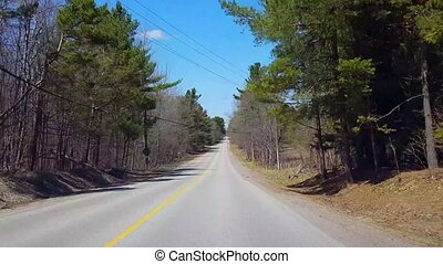 beau, conduite, point, campagne, printemps, chauffeur, arbres, day., pov, scenery., forêt, ensoleillé, pendant, long, pays boisé, vue