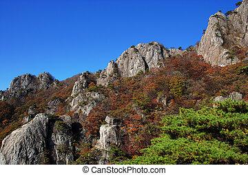 beau, corée, daedunsan, paysage automne, sud