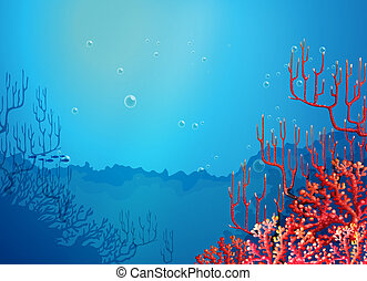 beau, coraux, mer, sous
