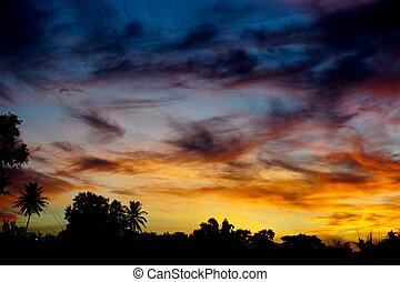 beau, coucher soleil
