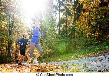 beau, couple, ensoleillé, dehors, automne, courant, forêt