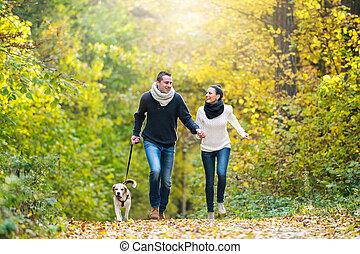 beau, couple, jeune, chien, automne, courant, forêt