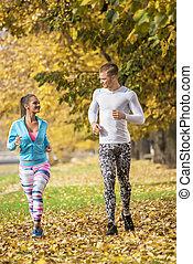 beau, couple, jeune, ensemble, automne, courant, park., environment.