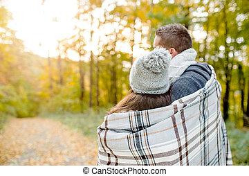 beau, couple, love., ensoleillé, jeune, automne, nature.