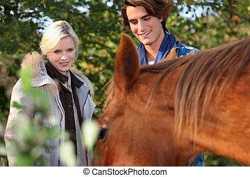 beau, couple, tenu, cheval