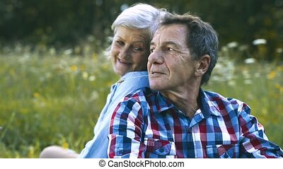 beau, couples aînés, séance, sur, été, meadow.
