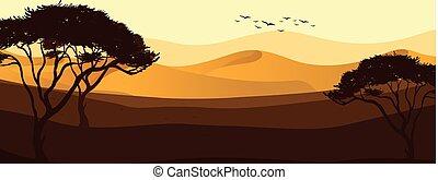 beau, désert, vue