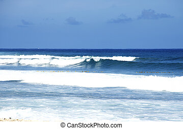 beau, day., plage, côte