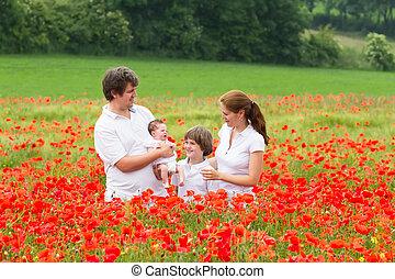 beau, debout, fleur, famille, quatre, champ, magnifique, pavot