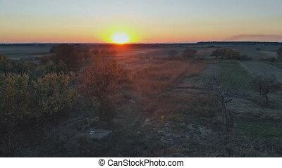 beau, doré, aérien, nature, champs, sous, paysage rural, sunset.
