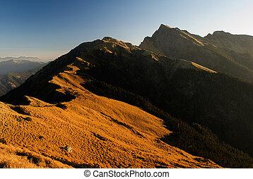beau, doré, paysage., élevé, montagne, levers de soleil