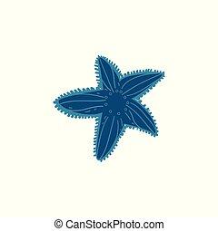 beau, etoile mer bleue, isolé, arrière-plan., décorations, blanc