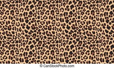 beau, exotique, haut, lent, naturel, léopard, résumé, ...