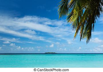beau, exotique, island.