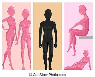 beau, factice, poses, figure, plastique, vecteur, mannequin, femme, modèle, mâle, sculpture, silhouette., séduisant