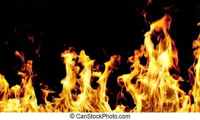 beau, fait boucle, réaliste, brûler, grand, animation., seamless, isolé, arrière-plan., noir, 4k, 3840x2160, flamme, ultra, hd, 3d