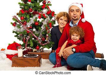 beau, famille, célébrer, noël