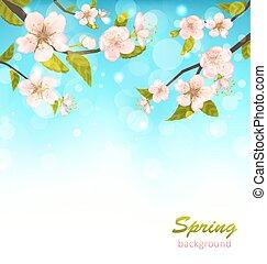 beau, fleur cerise