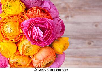 beau, fleur, coloré, bouquet, ranunculus, bois, fond