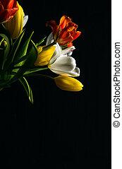 beau, fleur, coloré, bouquet, tulipes, arrière-plan noir