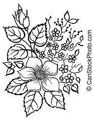 beau, fleur, contour, arrangement, arrière-plan noir, blanc