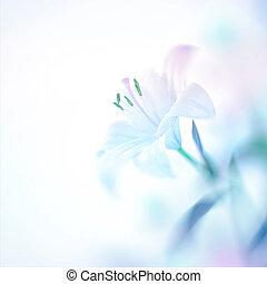beau, fleur, lis