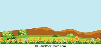 beau, fleurs, collines, paysage