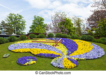 beau, floral, genève, coloré, horloge, symbole, -, suisse, horology, suisse