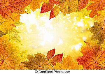 beau, fond, automne