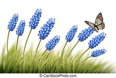 beau, fond, lavande, vector., butterfly.