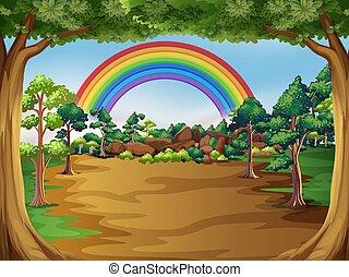 beau, forêt, paysage