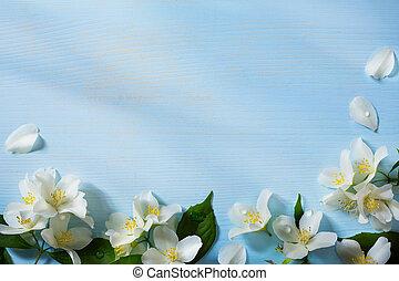 beau, frontière, art, fleurs, jasmin