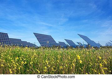 beau, génération, electricity., station, vert, solaire, lawn., panneaux