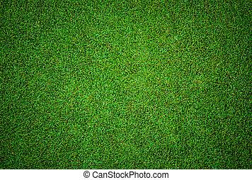 beau, golf, modèle, texture, cours, herbe verte