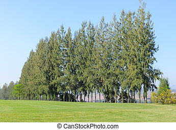 beau, golf, tribunal, paysage