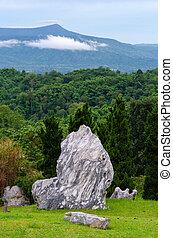 beau, grand, jardin pierre