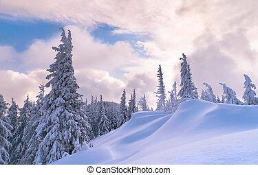 beau, hiver, coucher soleil, dans, les, carpathian, montagnes