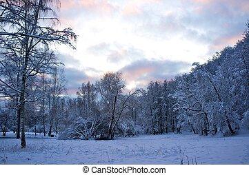 beau, hiver, paysage.