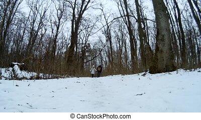 beau, hiver, randonée couple, jeune, forêt